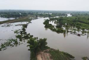 บุรีรัมย์แจ้งเตือน 6 หมู่บ้านริมมูลรับมือมวลน้ำเหนือจากโคราชทะลักท่วมฉับพลัน นาข้าวจมแล้วกว่า 100 ไร่