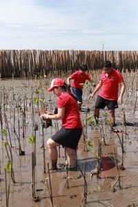 กลุ่มทรู ผสานพลังปลูกปันรักษ์ป่าชายเลน เพิ่มสมดุลทางธรรมชาติ ร่วมกับชุมชนสถานตากอากาศบางปู สมุทรปราการ