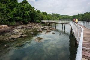 เกาะปูเลาอูบิน แหล่งธรรมชาติที่ใหญ่ที่สุดและอุดมสมบูรณ์ที่สุดในสิงคโปร์