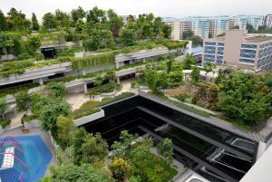 เปิดมุมมองเมืองลอดช่องที่แตกต่าง กับ 10 พื้นที่สีเขียว สัมผัสธรรมชาติสุดฟินในสิงคโปร์