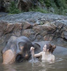 """หนุ่มๆแห่โฟกัส! เมื่อ """"เกรซ กาญจน์เกล้า"""" สวมเกาะอกบางเฉียบอาบน้ำให้ช้าง"""