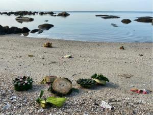 วอนนักท่องเที่ยวงดลอยกระทงลงทะเล เพื่อลดปริมาณขยะ เสี่ยงเกิดอันตรายจากเศษตะปู-เข็มหมุด