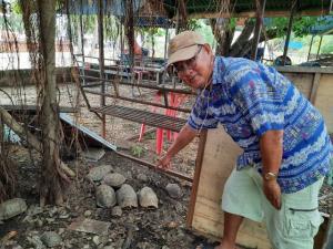 บาปมากกว่าบุญมั้ย? ญาติโยมอุ้มเต่าปล่อยวัด 5 ปี กว่า 100 ตัว จนขาดอาหารตาย