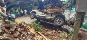 ต้นไม้ใหญ่ดอยสุเทพล้มทับรถยนต์พังยับ 3 คัน บาดเจ็บ 1 คน