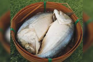 """""""สถาบันมะเร็งแห่งชาติ"""" ยันสารกันบูดในปลาทูนึ่ง หากสัมผัสก็ไม่ทำให้เป็นมะเร็งผิวหนัง"""