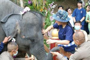 เจ้าฟ้าสิริวัณณวรีฯ ทรงเยี่ยมลูกช้างพลายบุญหนา-พังฟ้าแจ่ม ช้างในพระอุปถัมภ์ฯ ณ สถาบันคชบาลแห่งชาติฯ จ.ลำปาง