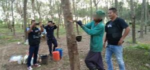 บุกจับต่างด้าวลอบกรีดยางเขตป่าสงวนกว่า 1,000 ไร่ ใน อ.เขาฉกรรจ์ จ.สระแก้ว