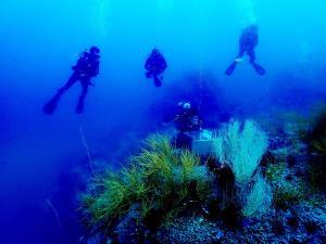 """สุดอันซีน! """"เส้นทางศึกษาธรรมชาติใต้น้ำ"""" แห่งแรกในไทย ที่ อช.หมู่เกาะชุมพร"""
