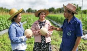 น่าทึ่ง! สาวอยุธยาต่อยอดไร่เมล่อนรุ่นบุกเบิก สร้างตำนานสมาร์ทฟาร์มเมอร์ส่งออกได้ทั้งปี-ผลิตสินค้าใหม่อีก