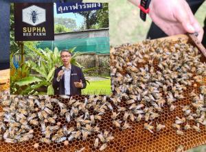 กสอ.กรุยทางเชื่อมคลัสเตอร์เลี้ยงผึ้ง เสริมศักยภาพน้ำผึ้งให้เทียบเท่าระดับนานาชาติ