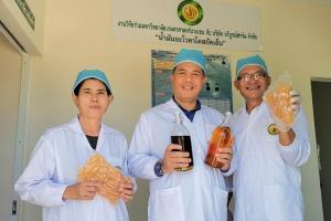 """ส่องฟาร์ม """"อะโวคาโดโอโซน"""" แห่งแรกของไทย ถอดบทเรียนสู้มะเร็งปลูก-แปรรูป สร้างแบรนด์ """"Ovado"""" ส่งออก"""