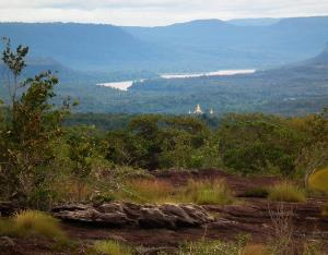 ป่าดงนาทาม มองเห็นแม่น้ำโขงและวัดริมน้ำ