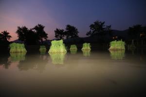 ทิพยสืบสานฯ ครั้งที่10  เยือนสวนสมเด็จย่า พิพิธภัณฑ์ธรรมชาติที่มีชีวิต จังหวัดเพชรบุรี