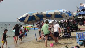 บางแสนทะลัก! ประชาชน-นักท่องเที่ยวแห่ใช้สิทธิคนละครึ่งแน่นชายหาด เชื่อเงินสะพัดนับสิบล้าน