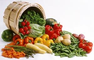 KTBชี้เทรนด์อาหารจากพืช ต่อยอดธุรกิจอาหารไทย