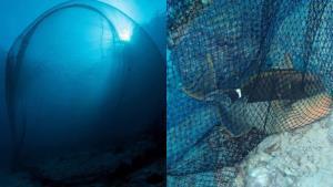 """ดร.ธรณ์ เผยพบการวางอวนจับปลา """"เกาะบอน"""" เขตอุทยานสิมิลันกลางวันแสกๆ"""