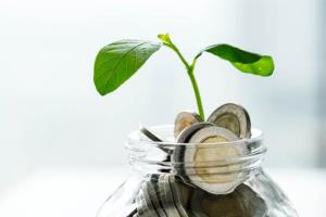 WWFชี้ ธนาคารในอาเซียน - ญี่ปุ่น - เกาหลีใต้ ต้องเร่งดำเนินการตามหลัก ESG