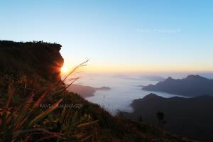ทะเลหมอกกับแสงเช้าที่สวยงามของภูชี้ฟ้า