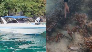 เอาจริง! อุทยานฯ จับกุมเรือนำเที่ยวมักง่าย ทิ้งสมอทับปะการัง-ฝ่าฝืนเข้าเขตหวงห้าม (ชมคลิป)
