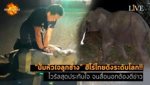 """[คลิป] """"ปั๊มหัวใจลูกช้าง"""" ฮีโร่ไทยดังระดับโลก!! ไวรัลสุดประทับใจ จนสื่อนอกต้องตีข่าว"""