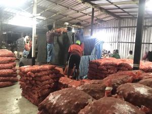 ทหาร ฉก.ลาดหญ้ารวบขบวนการลอบนำเข้าหอมแดงรายใหญ่จากประเทศเพื่อนบ้าน