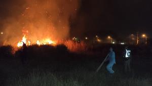ระทึก! ไฟโหมไหม้ป่าหญ้าศรีราชา เปลวไฟสูงเกือบ 10 เมตร เจ้าหน้าที่ดับเพลิงโดนกักตัว 14 วัน ชาวบ้านต้องช่วยดับกันเอง