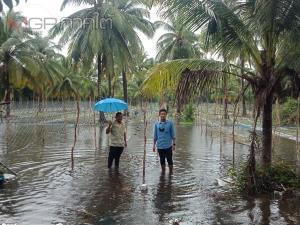 เกษตรจังหวัดปัตตานีเร่งช่วยเหลือดูแลเกษตรกรผู้ประสบภัยน้ำท่วม