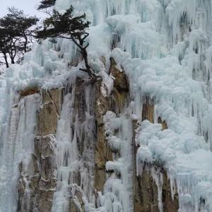 """เย็นยะเยือก! """"หุบเขาน้ำแข็งชองซง"""" จากน้ำตกกลายเป็นน้ำแข็งสุดงดงามในเกาหลีใต้"""