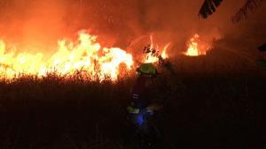 หวิดวอด! วัยรุ่นมือบอนปาระเบิดลูกบอลในป่าหญ้าเมืองพนัสฯ ทำไฟลุกท่วมโชคดีระงับทัน