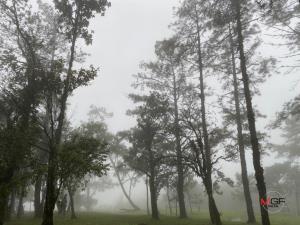 อุ่นขึ้น! อุตุฯ เผยอุณหภูมิสูงขึ้น 1-3 องศา แต่ไทยตอนบน-กทม.ยังคงหนาวเย็น