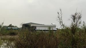 ชาวบ้าน 2 อำเภอโวย!! สุดทรมานเหม็นกลิ่นเน่าโรงงานล้างไส้ไก่