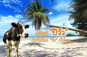 """สวัสดี """"ปีวัว"""" กับที่เที่ยว """"วัว"""" ทั่วไทย"""