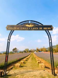 (ภาพจาก Facebook : Chateau Chili & Laven De Brume)
