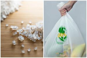 สถาบันพลาสติกคาดส่งออกเม็ดพลาสติกชีวภาพปี 64 โต 16.6% รับเทรนด์โลก