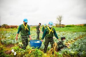 """""""รถสายัณห์"""" มทบ.210 เดินสายซื้อพืชผักจากเกษตรกร ช่วยเหลือชาวบ้านห้วงโควิด-19 ระบาด"""