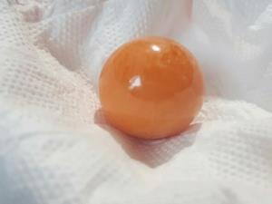 """เจออีก!! มุกสีส้มคล้าย """"มุกเมโล"""" หายาก คราวนี้พบที่สะพานปลาแหลมฉบัง จ.ชลบุรี"""