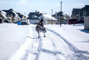 สหรัฐฯ เจอสภาพอากาศเลวร้าย เทกซัสหนาวเหน็บกว่าอะแลสกา-เนแบรสกาอุณหภูมิ -35 องศา