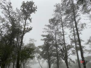 อุตุฯ เตือนวันนี้ไทยตอนบนอุณหภูมิลดลง กรุงเทพฯ อากาศเย็นลมแรง ใต้เจอมรสุม มีฝนเพิ่มขึ้น