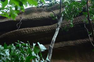 ถ้ำนาคี 2 (ภาพ : อช.ภูลังกา)