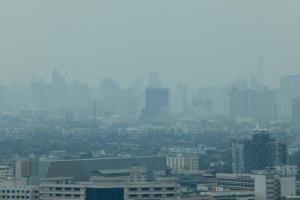 เช้านี้ กทม.พบฝุ่น PM 2.5 เกินมาตรฐาน 54 พื้นที่ เริ่มมีผลกระทบต่อสุขภาพ เตือนงดกิจกรรมกลางแจ้ง