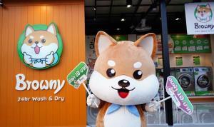 Browny 24 hr Wash & Dry ร้านสะดวกซักสไตล์ Low-Cost Premium มิติใหม่แห่งร้านธุรกิจสะดวกซัก 24 ชั่วโมง