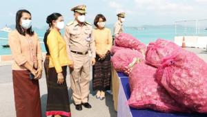 กองทัพเรือจัดงบช่วยเหลือเกษตรกรใน จ.ศรีสะเกษ ซื้อหอมแดง 5 ตันหลังราคาตกต่ำ