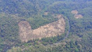 ดรามาหนัก! เกิดแฮชแท็ก #saveแก่งกระจาน โซเชียลเสียงแตกหลังพบชุมชนกะเหรี่ยงบุกรุกป่าบางกลอยบนกว่า 100 ไร่
