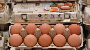 ซีพีเอฟหนุนรัฐเร่งส่งออกไข่ระบายส่วนเกิน สร้างเสถียรภาพราคาในประเทศช่วยเกษตรกร