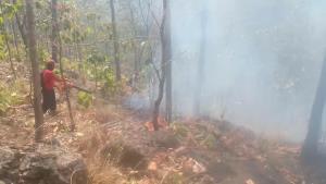 เชียงใหม่จุดความร้อนพุ่งหลังประกาศห้ามเผา-ห้ามเข้าป่า 1 มี.ค. - 30 เม.ย. 64 ไฟไหม้ป่าเพียบต้องระดมดับ