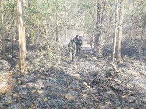 แม่ทัพภาค 3 ห่วงไฟป่าภาคเหนือจุดความร้อนเพิ่มค่าฝุ่นพุ่ง-สั่งเข้ม กม.ลาดตระเวนปิดป่าห้ามเผา