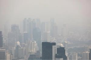 กรมควบคุมโรค แนะประชาชนป้องกันตนเองจากฝุ่น PM 2.5 ควรติดตาม-เฝ้าระวังสถานการณ์อย่างใกล้ชิด