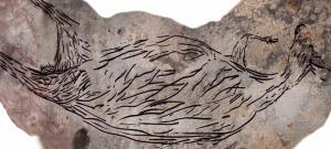 ออสเตรเลียพบภาพเขียนสีจิงโจ้ อายุ 17,000 ปี