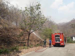 น่าเศร้า! ไฟป่าโหมไหม้ทั้งวันทั้งคืน ผืนป่าเหนือเขื่อนภูมิพลวอดแล้วกว่า 50,000 ไร่