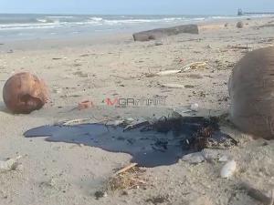 """พบซาก """"เต่าตนุ"""" ถูกคลื่นซัดเกยหาดหัวไทร ปัญหาก้อนน้ำมันทะลักยังไร้คำตอบ"""
